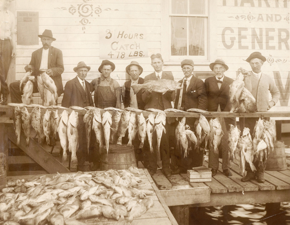 Abundant fishing in sarasota bay sarasota history alive for History of fishing